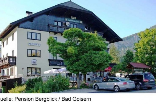 BERGBLICK_BADGOISERN2A-15.JPG