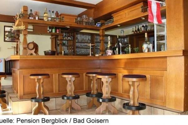 BERGBLICK_BADGOISERN3A-15.JPG