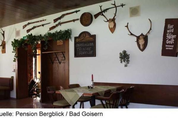 BERGBLICK_BADGOISERN3B-15.JPG