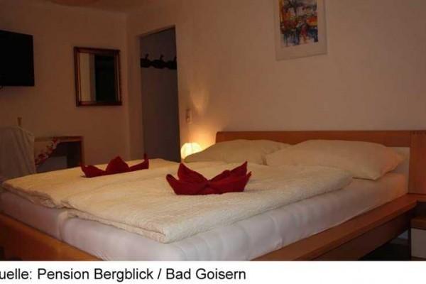 BERGBLICK_BADGOISERN4C-15.JPG